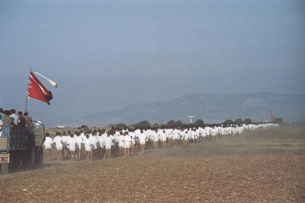 cabras_08